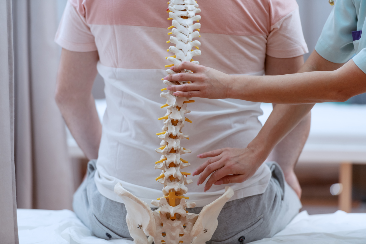 A nurse holding up a spinal model to a patient